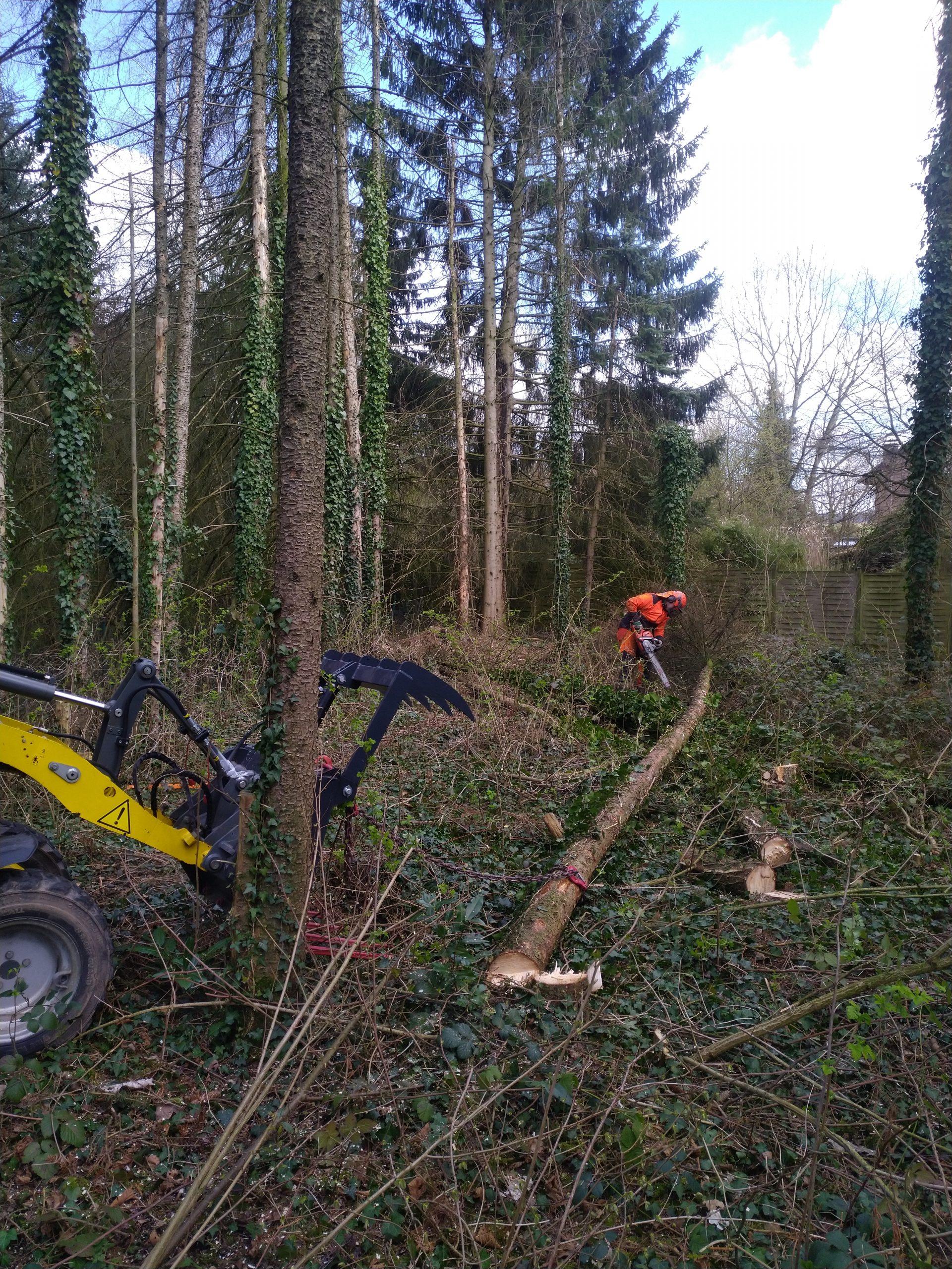 Baumarbeiten skl