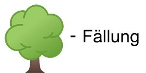 Detmold Baumfällungen Baumällung