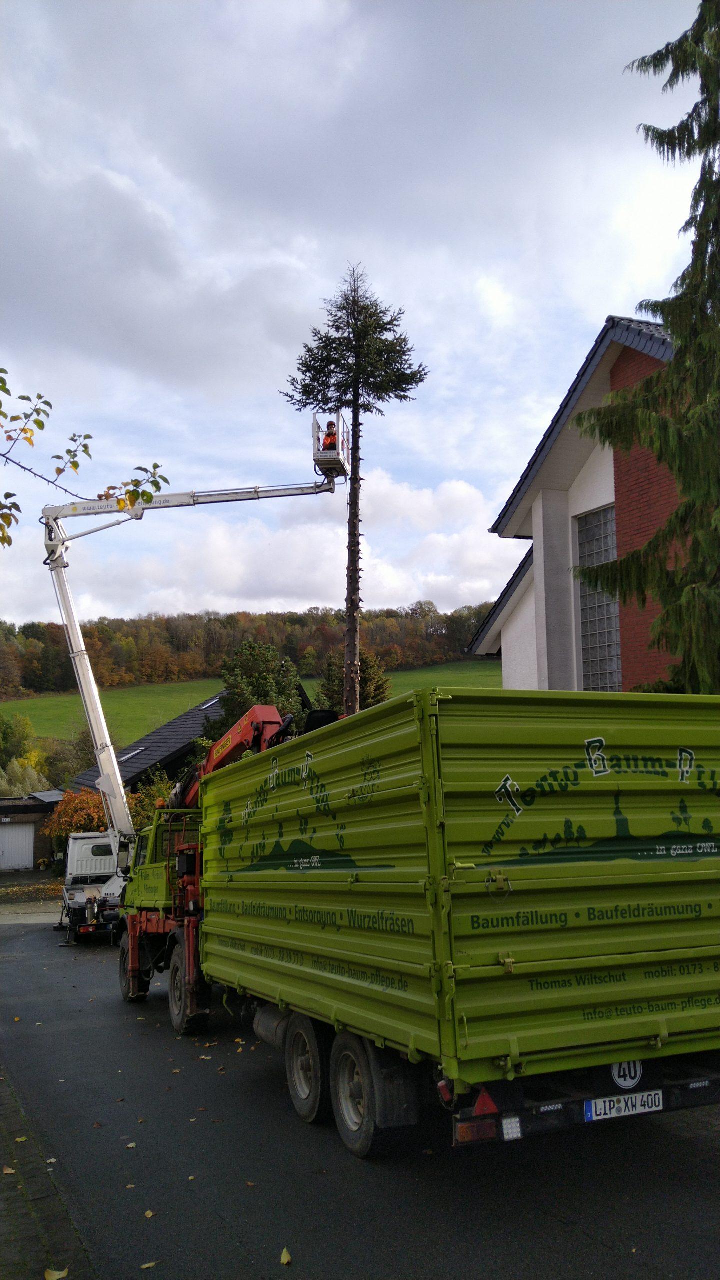 Baumarbeiten skl Detmold